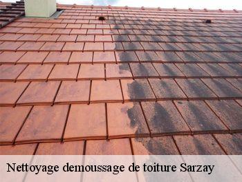 Entreprise nettoyage et démoussage de toiture à Sarzay tel: 02.52.56.12.71